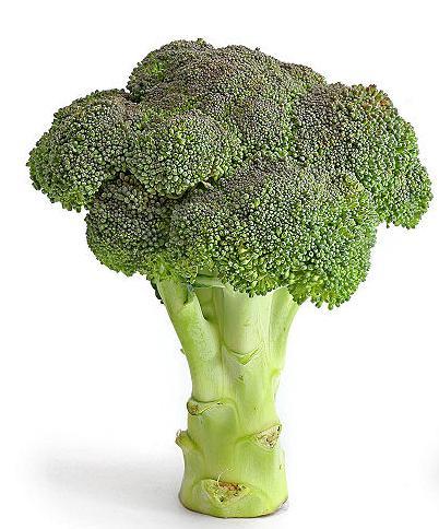 Baby Broccoli Soup
