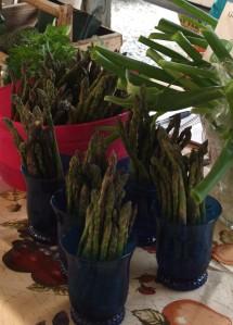 rocky horse asparagus 2